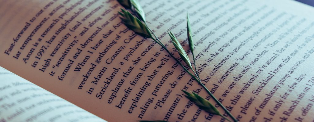7 Creative Ideas To Write Spotless Novel Openings