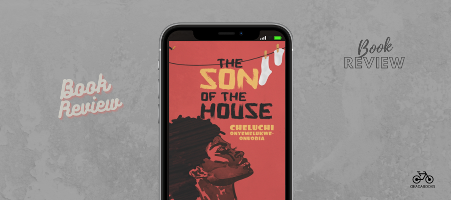 The Son Of The House: Cheluchi Does Impeccable Work Here, While Entertaining, Educating, And Appealing To One's Sense Of Morality – Book Review